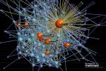 GraphInsight @ItaliaCampLigur Network Relazionale Zoom